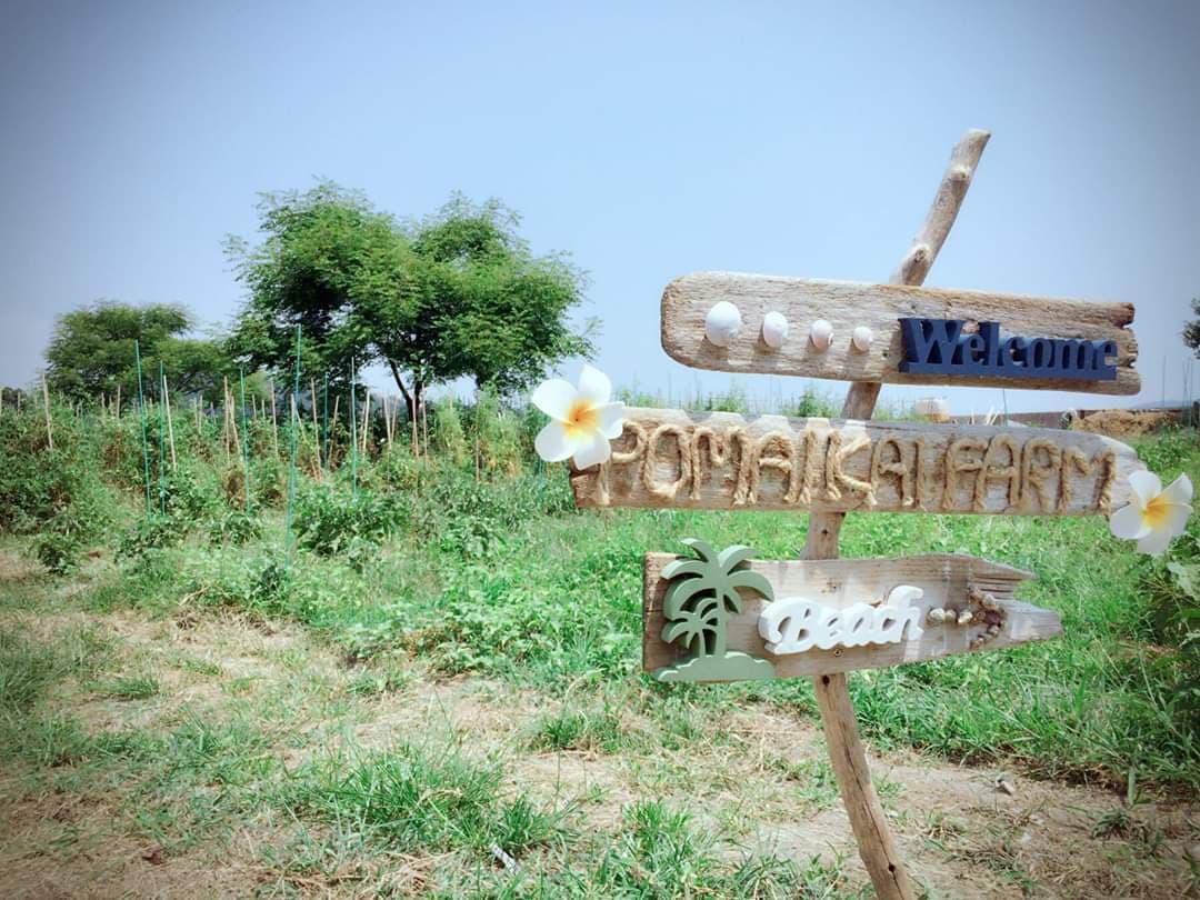 ポマイカイ農園-1