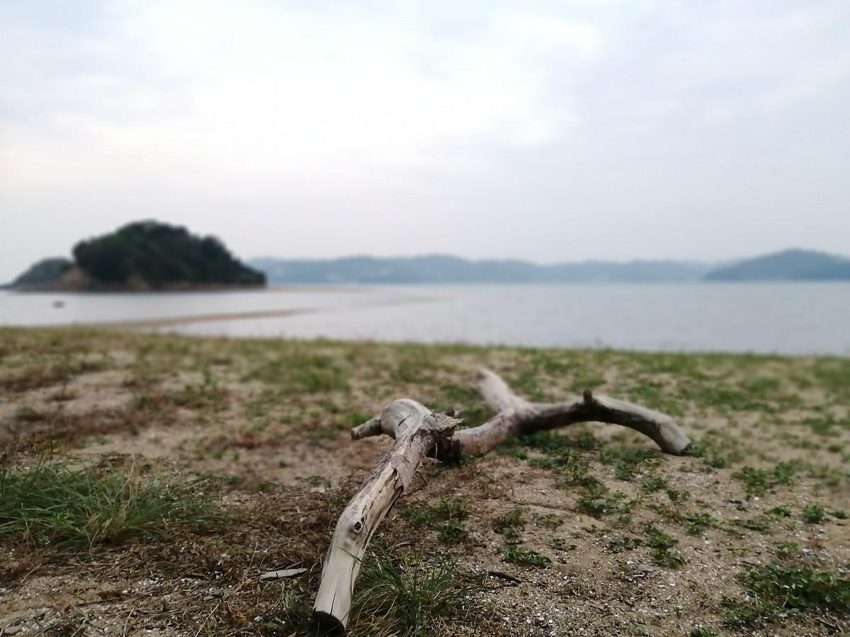 岡山県青少年の島黒島-1